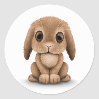 Cute Brown Baby Bunny Rabbit on White Classic Round Sticker