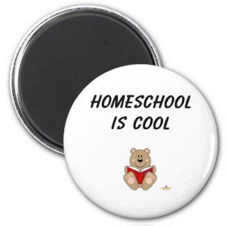 Cute Brown Bear Reading Homeschool Is Cool Refrigerator Magnet