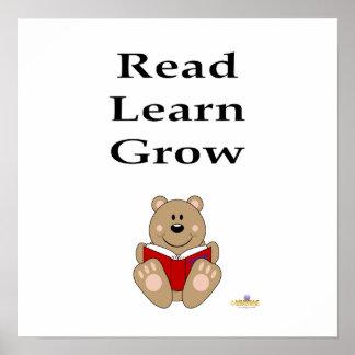 Cute Brown Bear Reading Read Learn Grow Poster