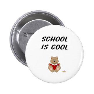 Cute Brown Bear Reading School Is Cool Pinback Button