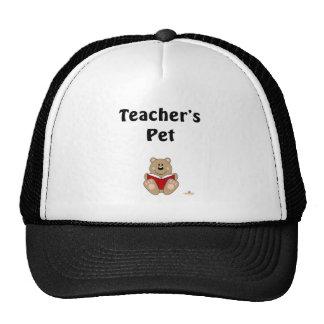 Cute Brown Bear Reading Teacher's Pet Trucker Hat
