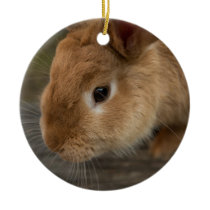 Cute brown bunny ceramic ornament