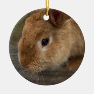 Cute brown bunny ceramic ornament