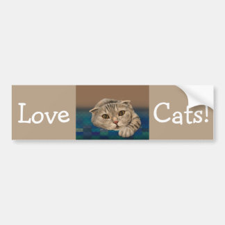 Cute Brown Furry Cat with Honey Eyes Bumper Sticker