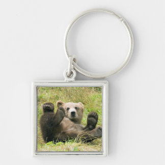 Cute brown grizzly bear cub photo, gift keychain
