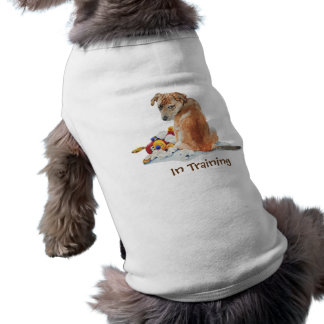 Cute brown mixed breed puppy and teddy training tee
