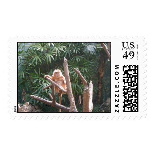 Cute Brown Monkey On The Tree Stamps