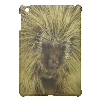 Cute Brown Porcupine  Case For The iPad Mini