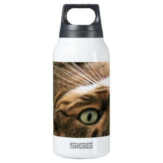 Cute Brown Spotted Bengal Cat Kitten Lying in Bed Insulated Water Bottle