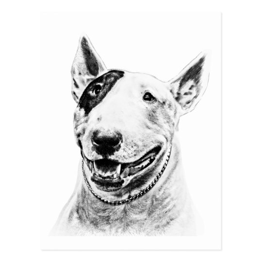 Cute Bull Terrier dog art Postcard