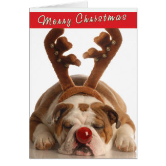 Cute Bulldog Christmas card