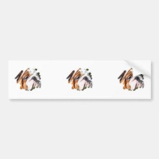 Cute Bulldog Photo Car Bumper Sticker