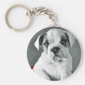 Cute Bulldog Puppy Basic Round Button Keychain