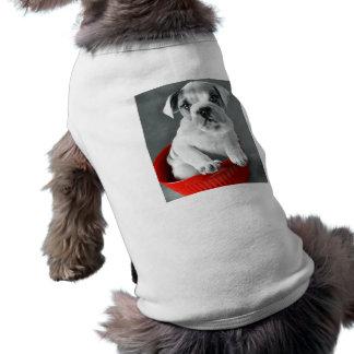 Cute Bulldog Puppy Dog Clothes