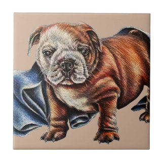 Cute Bulldog Puppy with Blue Blanket Drawing Tile