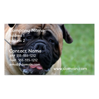 Cute Bullmastiff Double-Sided Standard Business Cards (Pack Of 100)