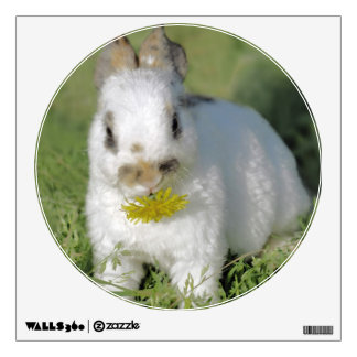 Cute Bunny Eating yellow Dandelion Flower Wall Decal