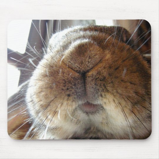 Cute Bunny Lips and Mouth Mouse Pad