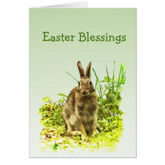 Cute Bunny Rabbit in Grass Easter Card