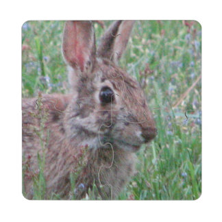 Cute Bunny Rabbit In Wildflowers Spring Nature Puzzle Coaster