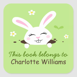 Cute bunny rabbit looking out bookplate book