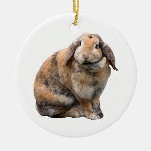 Cute Bunny Rabbit Lop Eared Ornament Gift Idea Ceramic Ornament