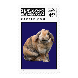 Cute bunny rabbit lop-eared postage stamp