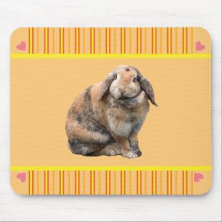 Cute bunny rabbit mousepad gift idea