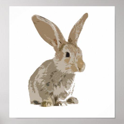 Cute bunny rabbit poster