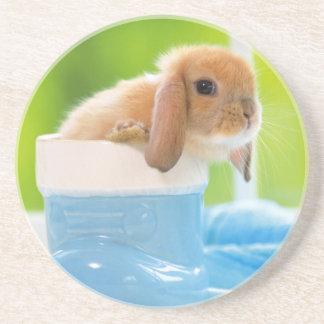 Cute Bunny Sandstone Coaster