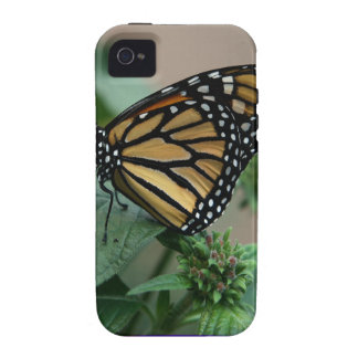 CUTE butterfly insect nature kids children family iPhone 4 Cases