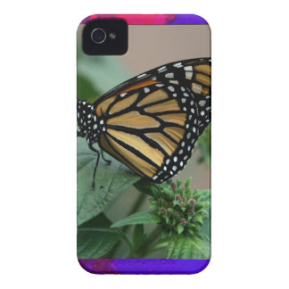CUTE butterfly insect nature kids children family iPhone 4 Cover