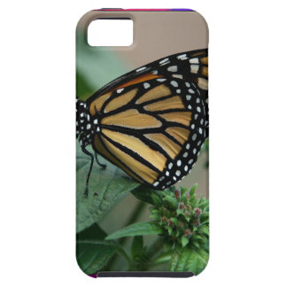 CUTE butterfly insect nature kids children family iPhone 5 Covers