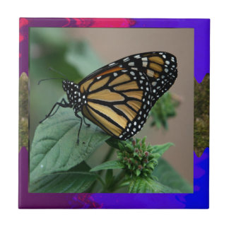 CUTE butterfly insect nature kids children family Tiles