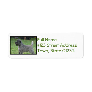 Cute Cairn Terrier Return Address Label