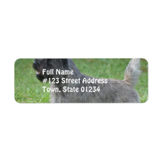 Cute Cairn Terrier Custom Return Address Labels