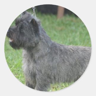 Cute Cairn Terrier Round Stickers