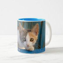 Curious Cat Mugs No Minimum Quantity Zazzle