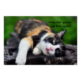 "Cute Calico Cat, ""Not Generic Food Again!"" Poster"