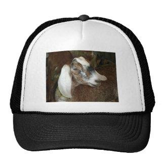 Cute Calico Goat Friend Trucker Hat