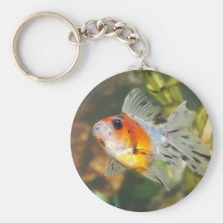Cute calico Ryukin Goldfish Keychain