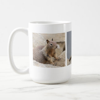 Cute California Ground Squirrel Coffee Mug
