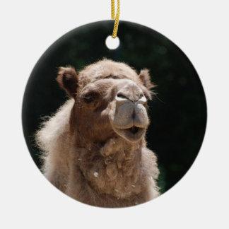 Cute Camel Ceramic Ornament