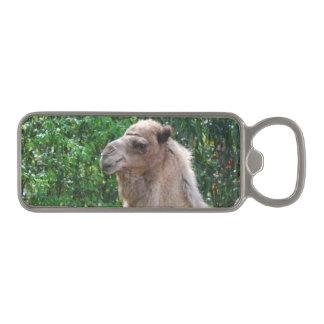 Cute Camel Magnetic Bottle Opener