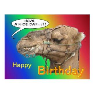 Cute Camel Rainbow Happy Birthday Postcard