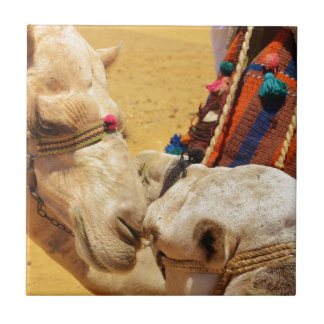 Cute Camels Small Square Tile