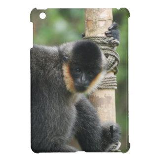 Cute Capuchin Monkey iPad Mini Covers