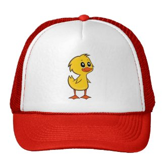 Cute Cartoon Duck Hat