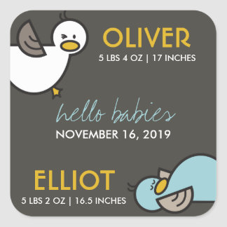 Cute Cartoon Ducks Twins Boys New Baby Gift Tags Square Sticker