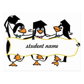 Cute Cartoon Graduating Penguins w/Banner Postcard